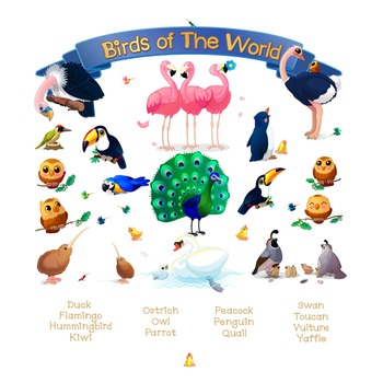 "♥ ""Birds of the World""  Poster"