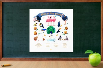 """♥ """"Birds of the World""""  Poster"""