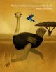 'Birdy Blue: Where Are You?' eBook