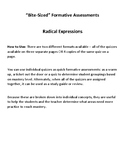 """""""Bite-Sized"""" Formative Assessments: Radical Expressions"""