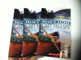 """Brian's Return"" books, by Gary Paulsen - Literature Circle Set"
