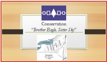 """""""Brother Eagle, Sister Sky"""" one day lesson plan; RL.7.9; printables & powerpoint"""