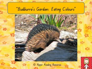 """Budburra's Garden"" - freebie for health and nutrition"