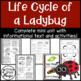"""Bugs"" Life Cycle Comprehension Bundle"