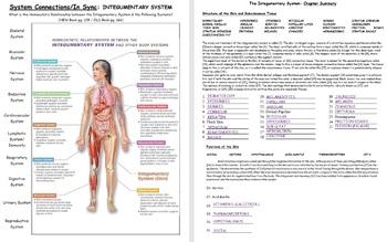 !!Bundle!!! Teachers Edition: Fall & Spring Semester Human Anatomy & Physiology
