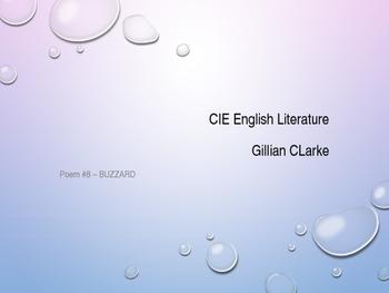 'Buzzard' by Gillian Clarke: an analysis