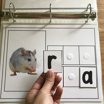 """CVC Words"" Binder Activities (w/Real Photos)"