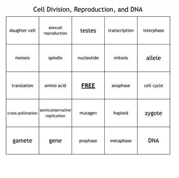 """""""Cell Division, Reproduction, and DNA"""" Bingo for a Middle School Science Course"""