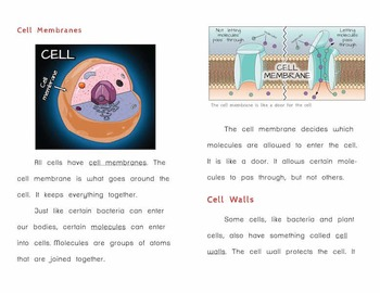"""Cells"" – Printable Book on Cells for Low-Literacy High School Students"