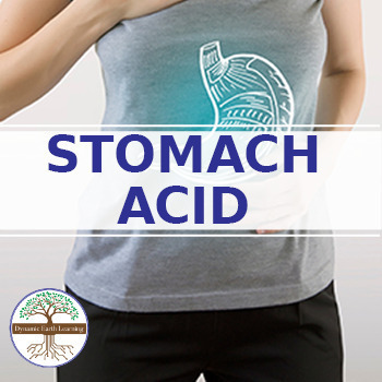 (Chemistry) STOMACH ACID - FuseSchool - Video Guide