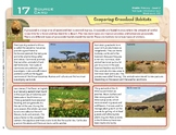 """Comparing Grassland Habitats"" Year 4 Card 17 Australian G"
