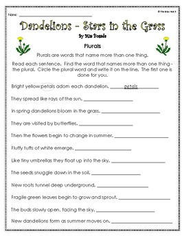 """""""Dandelions Stars in the Grass"""" Guided Reading, Writing, & Comprehension Work"""