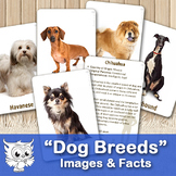 """Dog Breeds"" Cards and Facts"