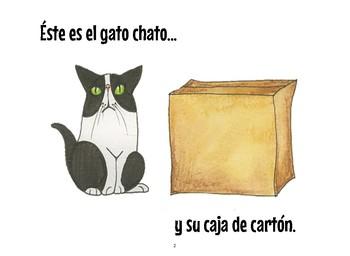 ¿Dónde está el gato chato?