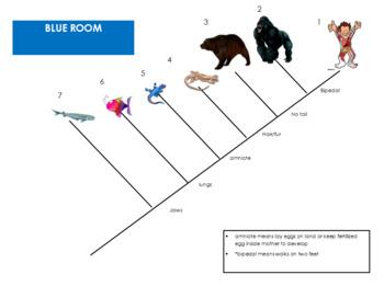 {EDITABLE}  Evolution Escape Room Lesson/Breakout Lesson