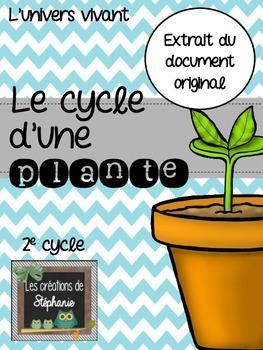 - EXTRAIT - Le cycle d'une plante