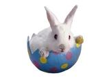 # Easter ESL Lesson for 4th Grade