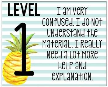 *Editable* Levels of Understanding