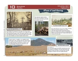 """Effects of Land Clearing"" Year 5 Card 10 Australian History Centres"