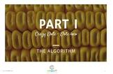 """""""Elote Loco"""" recipe  to learn algorithms"""