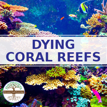 (Environment) Dying Coral Reefs Twitter Research Guide