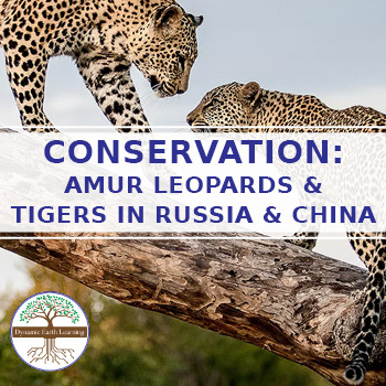 (Environment & Conservation) The Amur Leopard and Tiger Allianc - Twitter