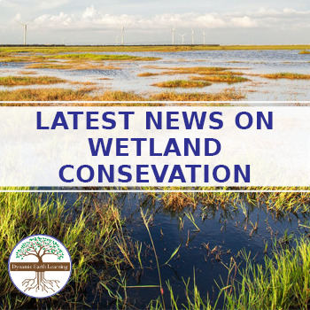 (Environment & Conservation) World of Wetland Conservation - Twitter Research