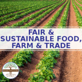Policy for Fair & Sustainable Food, Farm & Trade Systems - Research Activity