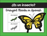 ¿Es un insecto? texto / Is it an Insect Emergent Reader in Spanish