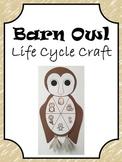 Barn Owl Life Cycle Craft