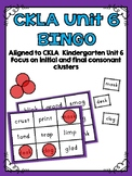 CKLA Kindergarten Skills Unit 6 BINGO