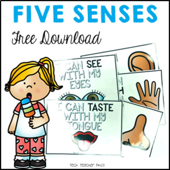 Five Senses Flash Cards Visual Reminders FREE DOWNLOAD By Tech