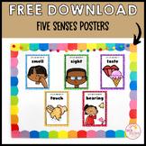 Five Senses FREE DOWNLOAD