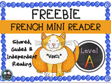 {FREE French Reader, Vocabulary Cards & Reading Assessment}
