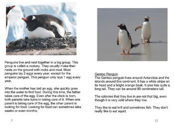 [FREE] Grade 7-8 Printable English Book Penguins   Reading Comprehension  
