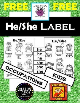 ***FREE***  He/She Picture Labeling