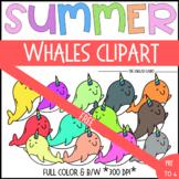 {FREEBIE #1!} Rainbow Whales Clipart