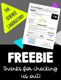 ***FREEBIE*** Balancing Chemical Equations Computer Game Activity