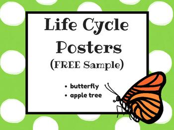 (FREEBIE) Life Cycle Posters Sample
