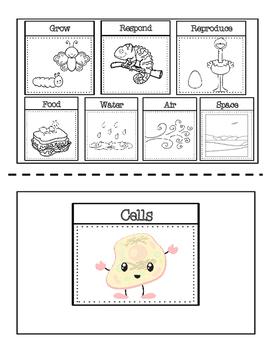 {FREEBIE}  Living Things Booklet
