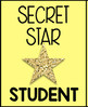 *FREEBIE* Secret Star Student