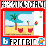 *FREEBIE* Working Prepositions of Place Boom Cards Speech