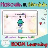 ☀️FRENCH☀️ Masculin/féminin - Le genre du GN - BOOM Learning
