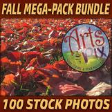 """Stock Photos - """"Fall"""" MEGA-Pack Bundle - 100 Autumn themed"""
