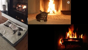 """Fireplace"" Powerpoint for Ambiance"