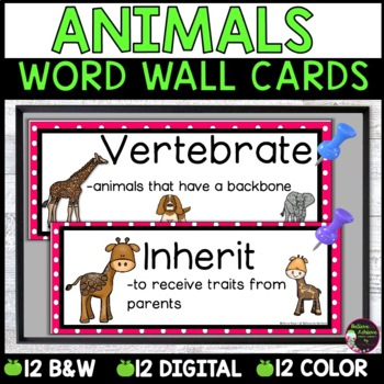 Animals Vocabulary- with definitions