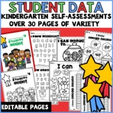 Student Data Tracking Sheets Binder Kindergarten