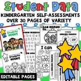 Student Data Tracking Sheets Binder Kindergarten
