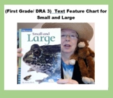 (First Grade/ DRA 4) Text Feature Chart for Small and Large (with answer key)
