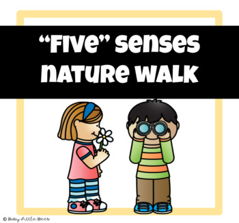 five senses nature walk by busy little bees teachers pay teachers. Black Bedroom Furniture Sets. Home Design Ideas